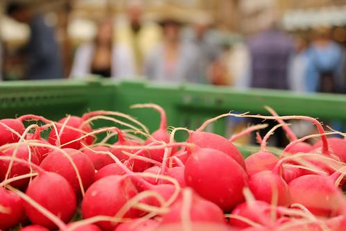 market radishes