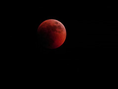 Bloody Moon (Calogero Rotolo) Tags: red sky moon eclipse blood nikon satellite spirits coolpix rosso sicilia p100 eclissi