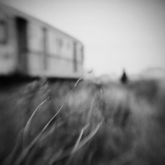 Just a dream (Victoria Yarlikova) Tags: bw blur monochrome silhouette lensbaby digital square blackwhite experimental moody atmosphere blurred dreamy
