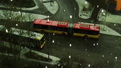 Hagel Schneekörner aka Graupel - plötzlich alles Grasige schneeweiß (eagle1effi) Tags: sx60 bus stadtbus graupel hagelschauer schneesturm 430ex speedlite caonon