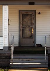 StoneSt (mikemarcotte386@att.net) Tags: morning cat tom kankakee steps frontporch railing stormdoor streetview