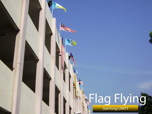 Flag Flying