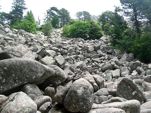 """Montée à la plaine d'Uovacce : l'""""étrange coulée de blocs"""""""