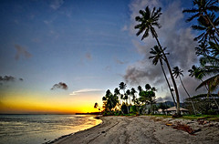 our first sunset (petervanallen) Tags: world ocean trip blue sunset sky orange tree beach leaves yellow landscape nikon pacific palm frond shore cookislands rarotonga colourful hdr worldtrip d90 dynamicphotohdr petervanallen wwwpetervanallencom