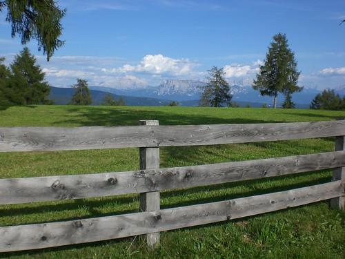 Almimpressionen mit Blick auf die Dolomiten