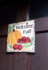 FallSign