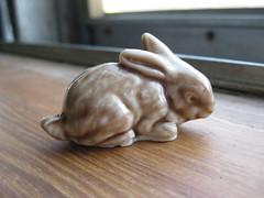 Wade Rabbit