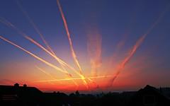 Aliens! Wallpaper 1280x800 (O.I.S.) Tags: morning blue red wallpaper sky sun rot skyline plane sunrise himmel planes blau herford contrails flugzeug sonne sonnenaufgang morgen morgens airoplane kondensstreifen flugzeuge fz50