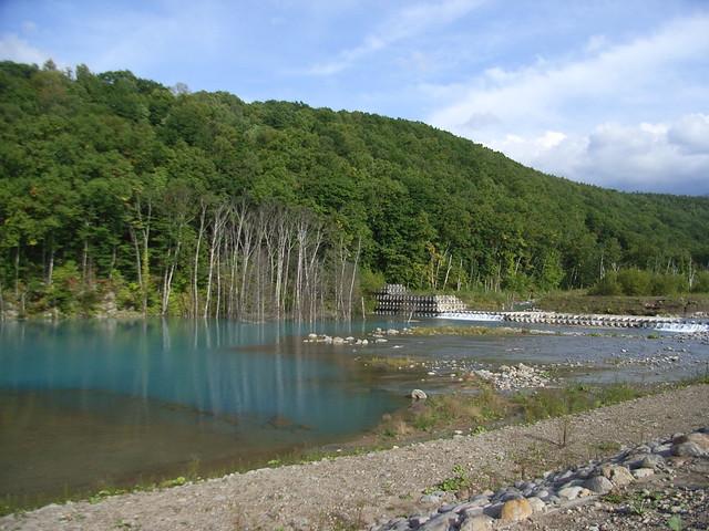 青い池 (41)