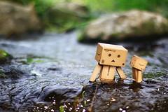 (sⓘndy°) Tags: sanfrancisco toy toys box figure figurine sindy kaiyodo yotsuba danbo revoltech danboard 紙箱人 阿楞 updatecollection ucreleased amazoncomjp