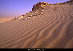 Sand texture @ Shakeer (Helminadia Ranford) Tags: nature landscape bahrain google sand gulf arabia ripples shakeer nationalgeography vosplusbellesphotos