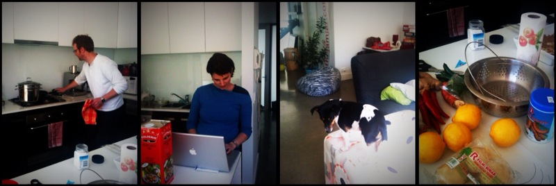 Fox and Willo cooking up a storm in the kitchen - Jet the Dog supervising