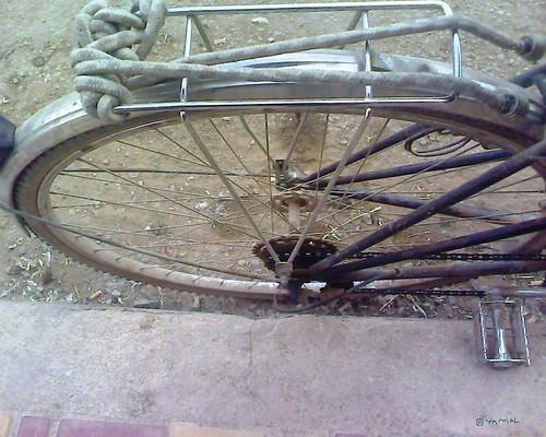 Vélo درّاجة