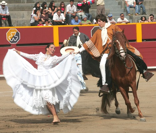 Marinera con caballo peruano de paso