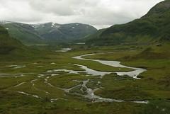 Scandinavia 61 (morleyroarly) Tags: norway scandinavia flam