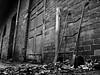 Worx B&W (k44rll) Tags: winter leaves barn blackwhite farm rusty ixus55 stacktruck