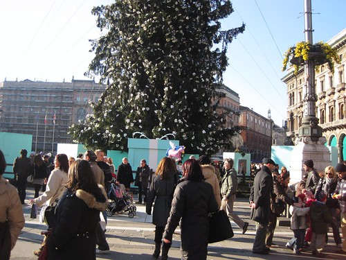 Christmas tree & tiffany gifts
