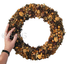 Wreath (Krans) (Made by BeaG) Tags: christmas brown circle design holidays belgium handmade unique creative wallart wreath round recycle krans homedecor naturalart kerst bruin reuse cirkel reclaim feestdagen rond repurpose recyclage tabledecoration doordecoration creatief homedecoration beag walldecoration doorart hergebruik naturalcrafts naturalwreath natuurlijkekrans driednaturalmaterials designedandmadebybeag ontworpenengemaaktdoorbeag knutselenmetnatuurlijkematerialen gedroogdenatuurlijkematerialen designerwreath designerwreaths
