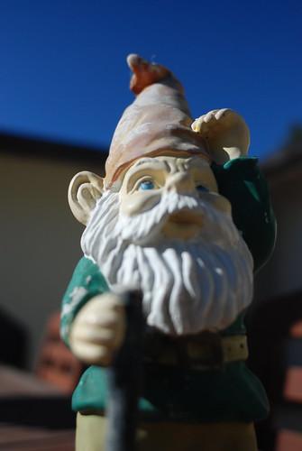 Obligatory Gnome