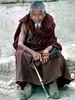 TibetMon9