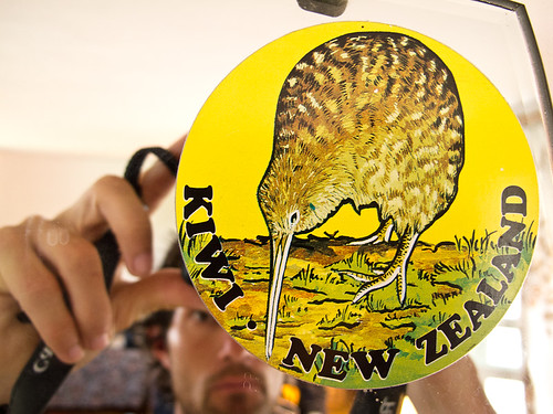 Kiwi sticker on mirror