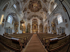 Pfarr- und Wallfahrtskirche Trautmannshofen - Mariä Namen (click to enlarge) (Only Snatches) Tags: altar architektur art barock baroque bavaria bayern church deutschland frescoes fresken germany kirche kunst neumarkt oberpfalz pilgrimagechurch rokinon sakralbauten samyang75mm135fisheye trautmannshofen upperpalatinate walimex wallfahrtskirche architecture sacredbuildings lauterhofen ngc