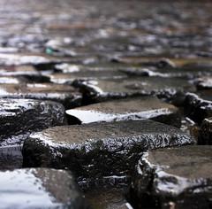 Soggy Cobbles (Adam Parkes Photography) Tags: dublin bar temple cobbles soggy