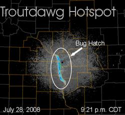 trout dawg hotspot