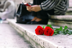 !    ..     (Missy | Qatar) Tags: red roses rome blackberry steps spanish bb curve bbm