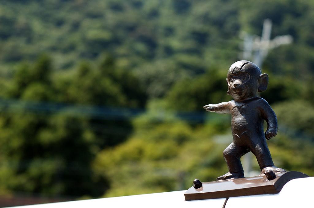 monkey #29