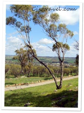 Avon Valley Hill