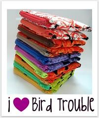BirdTrouble