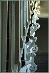 Curly (Ria Rotscheidt) Tags: white stairs germany deutschland iron hamburg curls wit trap elbe duitsland ijzer krullen havenstad stmichaeliskeriche