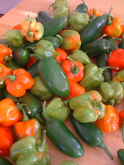 Peppers from the garden