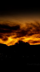 The Darkness Flame  (yusuf_alioglu) Tags: world new city sunset shadow red sky orange cloud sun sunlight mountain tree colors yellow clouds turkey dark photography lights photo fantastic flickr colours peace photographer darkness earth dream panasonic citylights planet 2009 darkcity globalwarming darksky planetearth gne dnya globalwarning blacl tokat karanlk fantasticcolors fantasticsky darkview darkmountain scarysky darktree stopglobalwarming planetworld abigfave globalchange picasa3 darkplanet panasonicdmcls80 yusufaliolu yusufalioglu tokatcity unbornart yusufaliogluphotography weloveyoutom imissyoutom thedarknessflame darknesflame