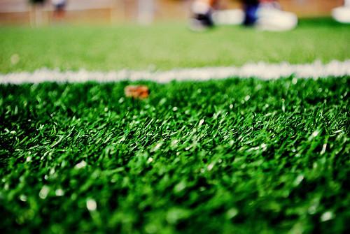 Grasssss.