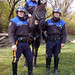 The Mounted Patrol Unit