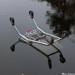 Pollution N1 (Marc Lagneau) Tags: bw lake france water nikon eau nb pollution cart parc chariot etang caddie d80 elancourt parcdescoudrays