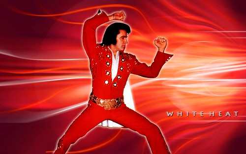 elvis presley wallpaper. Elvis Presley Wallpaper
