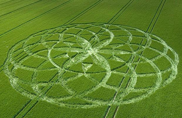 crop-circles-2_1414017i