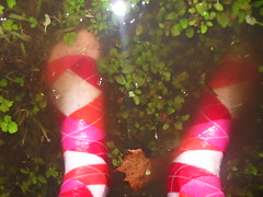 Back into the warm puddle. (Socks, Socks, and Socks. ^_^) Tags: pink red fun puddle jumping converse argyle allstars kneehighs wetness