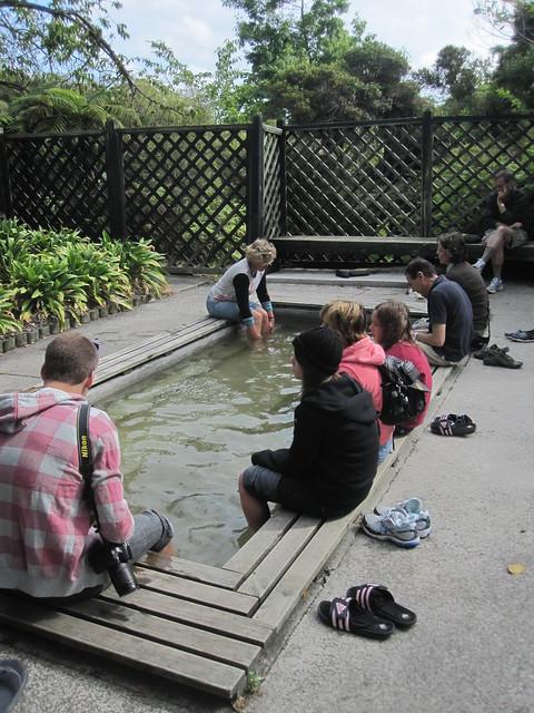 Rotorua 38 - Foot bath in Kuirau Park by Ben Beiske