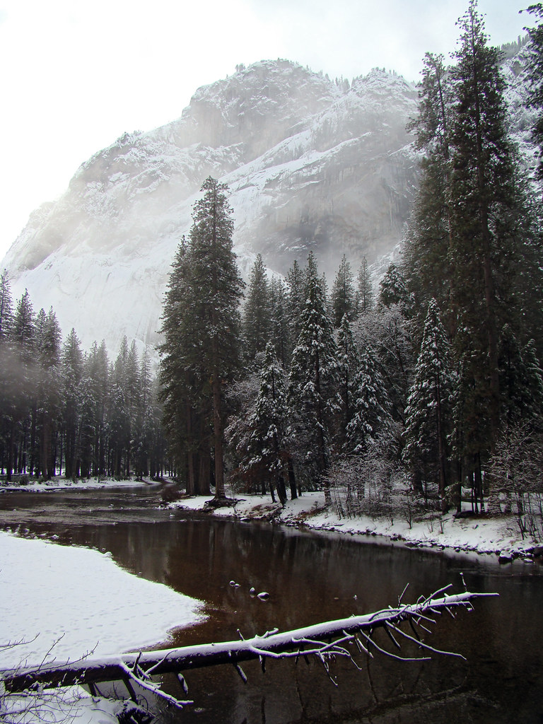 DSC04090 Yosemite Merced River