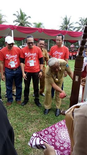 ICD 2017: Indonesia
