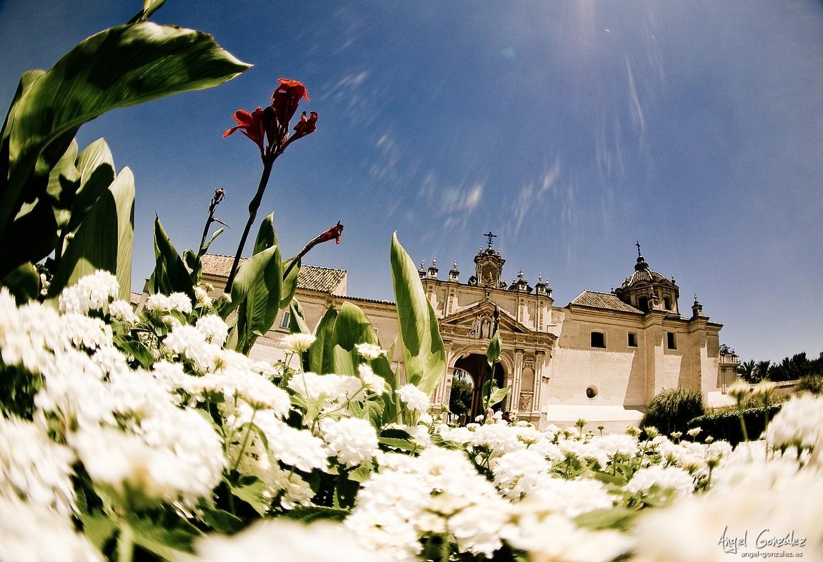 Monasterio de la Cartuja con el Peleng 1