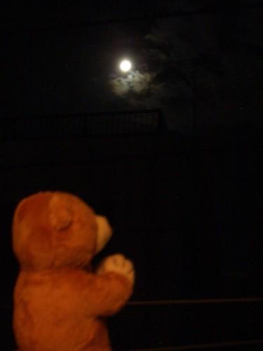 お月様、お月様。