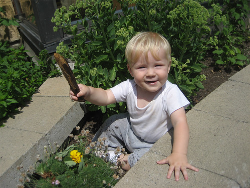 Jacob and stick in the garden