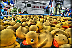 saint paul duck pond (Dan Anderson.) Tags: county carnival game minnesota st festival paul amusement duck stpaul ducks fair games rubber ducky rides twincities highlandpark midway saintpaul rubberduck mn carny duckpond rubberduckie bobbing rubberduckies highlandfest rubberducksrubberducky