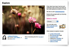 Different Strokes on Front Page :) (Ashu Mittal) Tags: screenshot flickr flickrexplore explorefrontpage