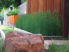 Flickr Landscaping  (19) (Badec Bros Landscaping) Tags: flowers trees summer flower tree art architecture modern garden landscape contemporary stunning waterfeature irrigation gabions koiponds landscapingarchitecture moderngardens badec kingfisherlandscaping badecbroslandscaping gabionwaterfeatures badecbrosdeco featurepoles